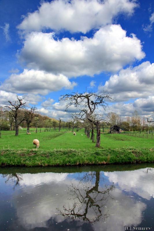 Langbroeker polder