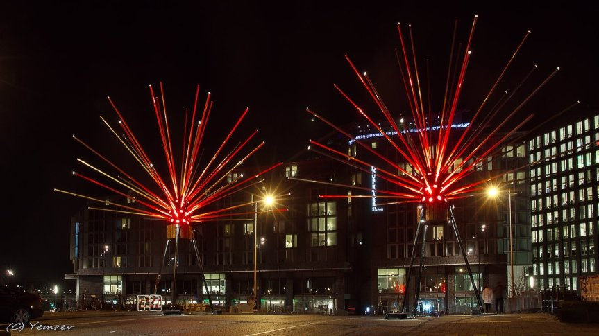 Astera in rood