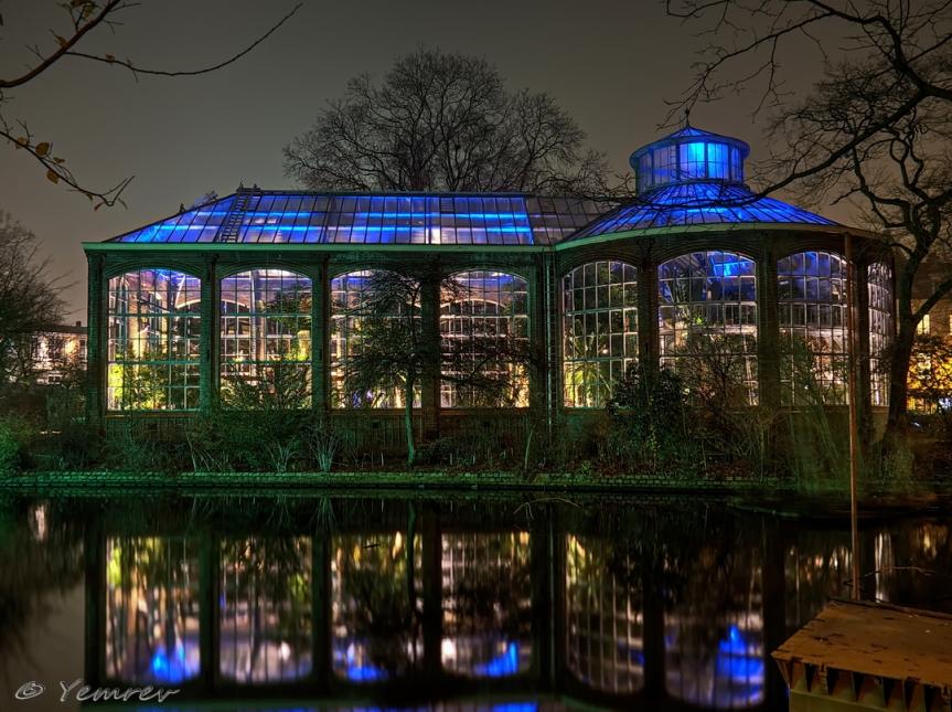 Amsterdam, Palmenkas, Hortus Botanicus