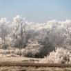 Net een echt winterwonderland