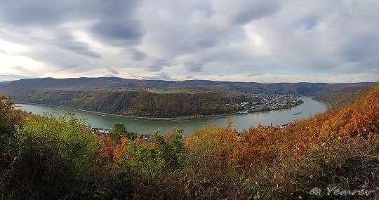 Rhein bij Boppard